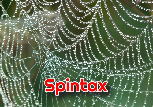 spintax