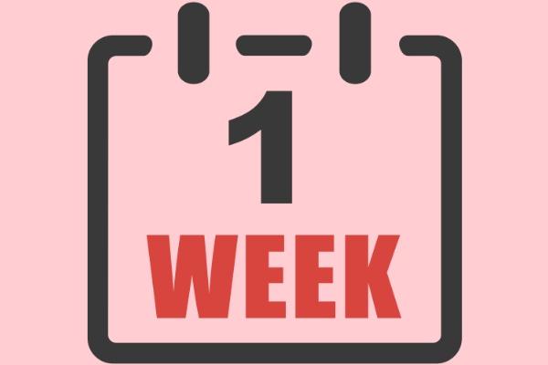 1week seo