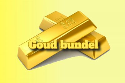 seo cursussen goud bundel