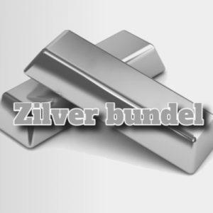 seo cursussen zilver bundel