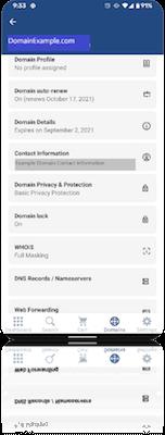 Voorbeeld domeinnaam in de GoDaddy Investor-app