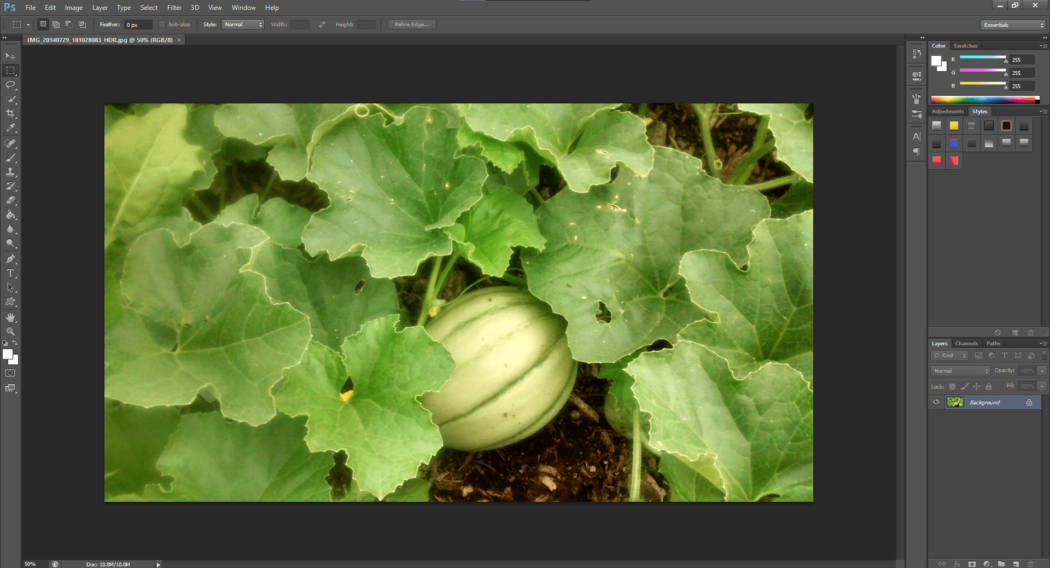 Beeldoptimalisatie voor WordPress Photoshop